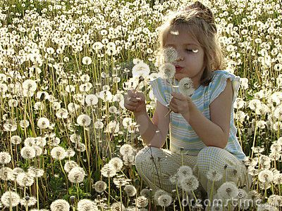 Portrait of the little pretty girl at the dandelion meadow