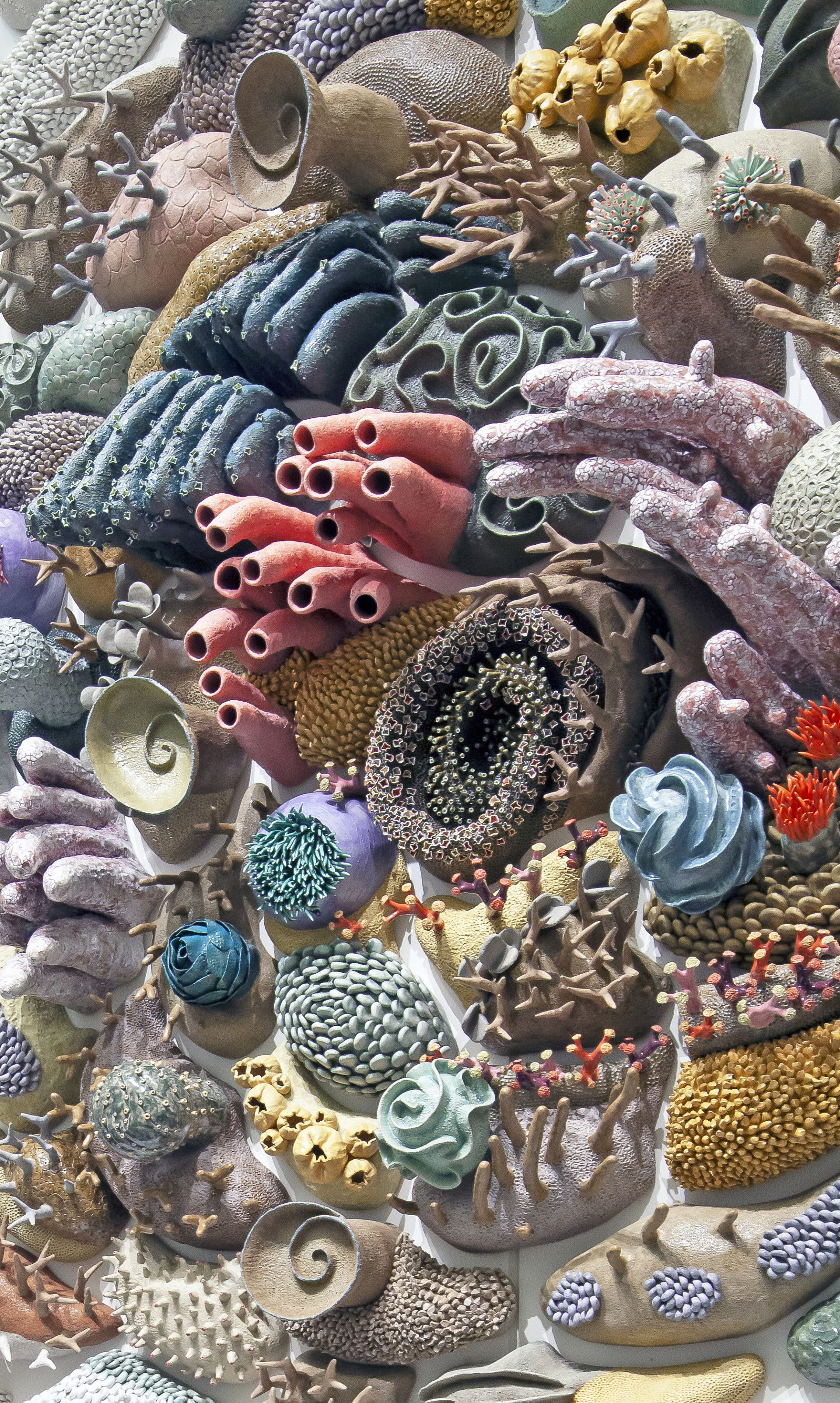 A Whirling Porcelain Coral Reef Draws Attention To The
