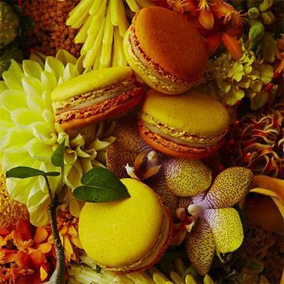 Macaron Jardin Pamplemousse (pamplemousse, clou de girofle et muscade), Pierre Hermé, janvier 2016