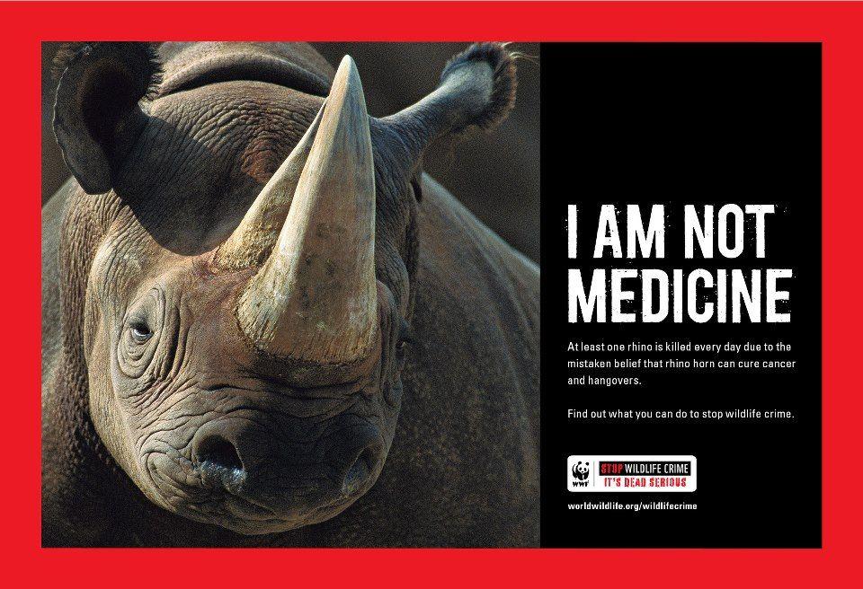 WWF I am not Medicine Wildlife, Save the rhino, Animal