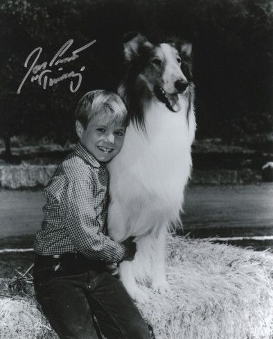 "Timmy (Jon Provost) with ""Spook"""