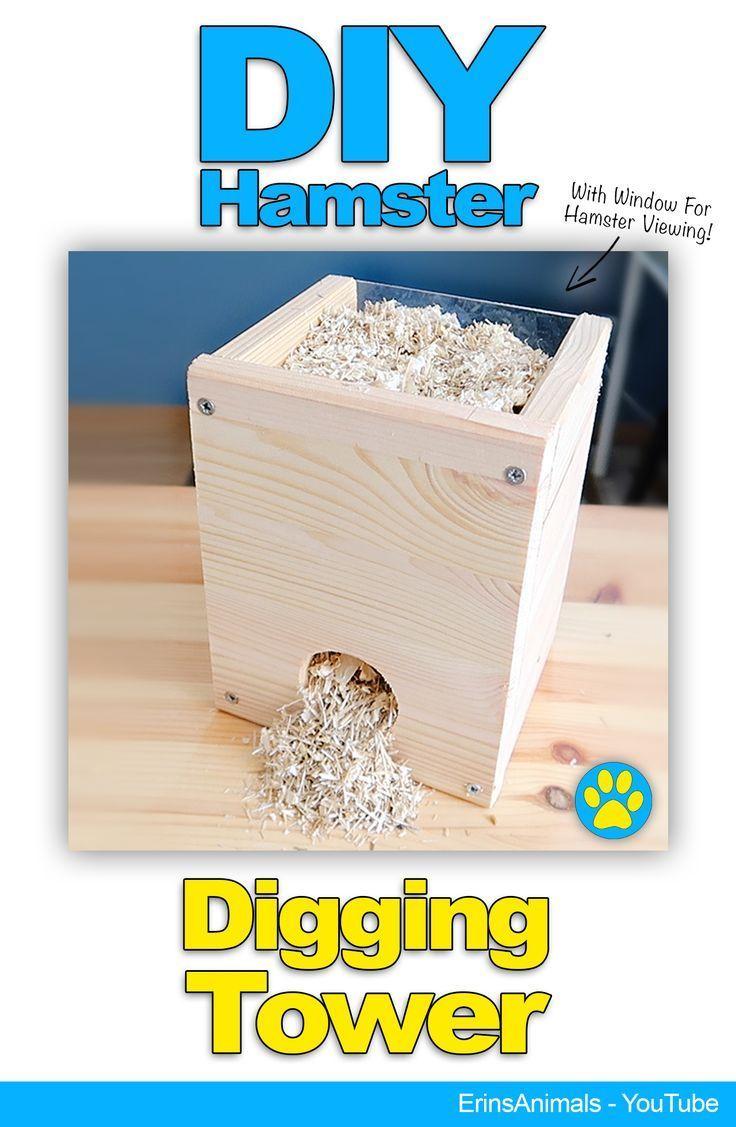 Diy Hamster Grabenturm Auch Fur Mause Ratten Und Andere Kleine