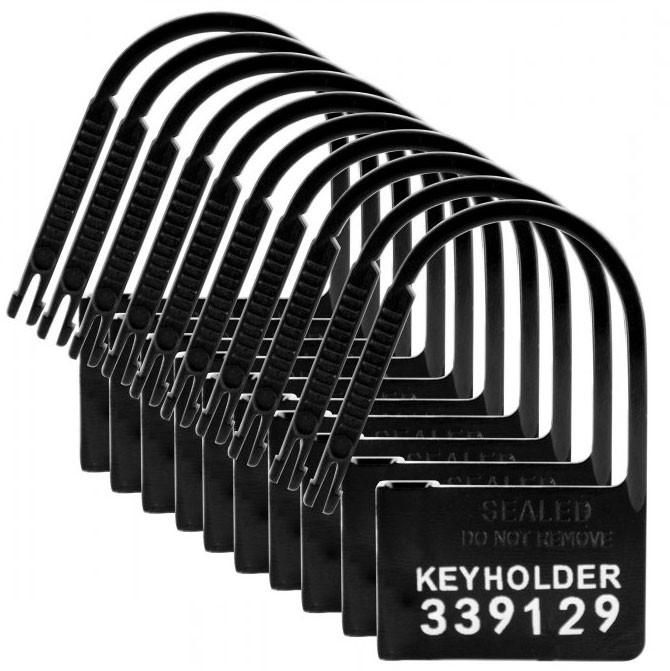 Keyholder Disposable Chastity Locks 10 Pack Chastity