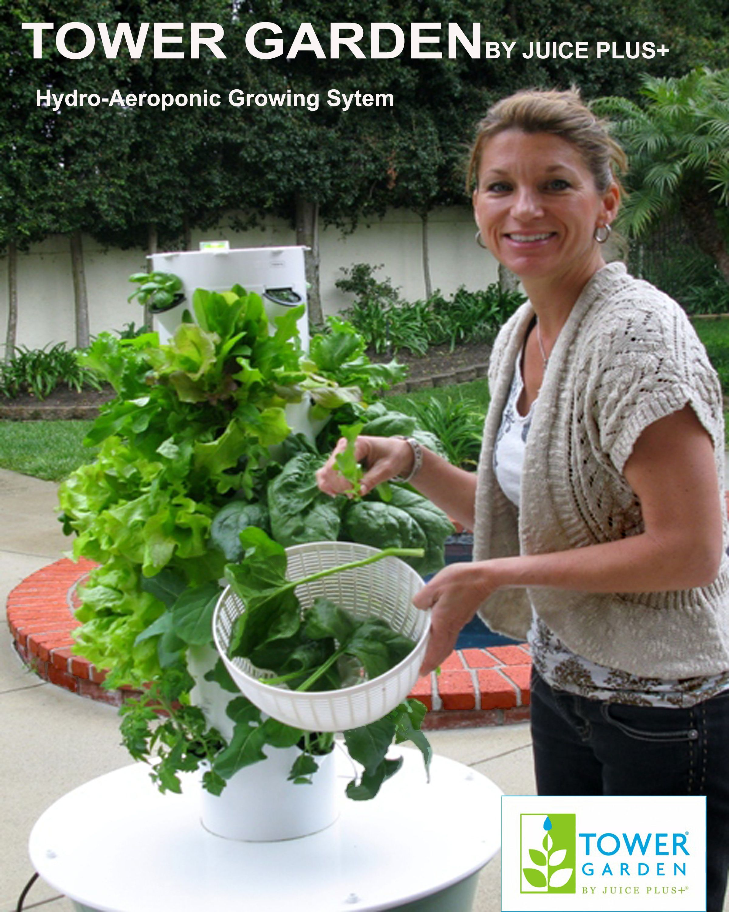 This Vertical Growing System Is Aeroponic Technology I M Growing