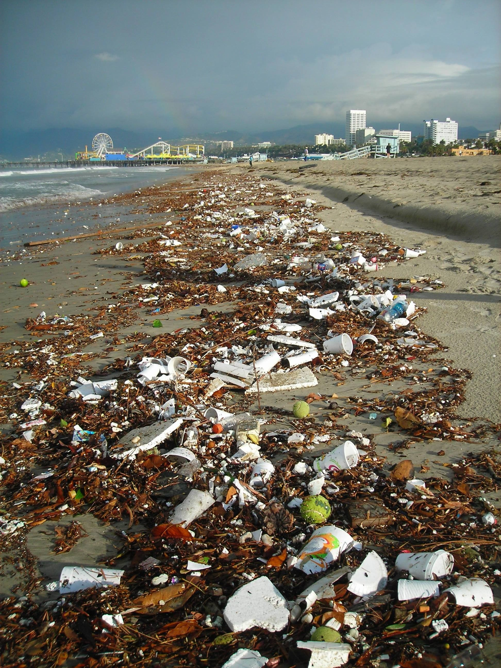 Debris Washed Up On Shore Flat Styrofoam Drink Cups Straws