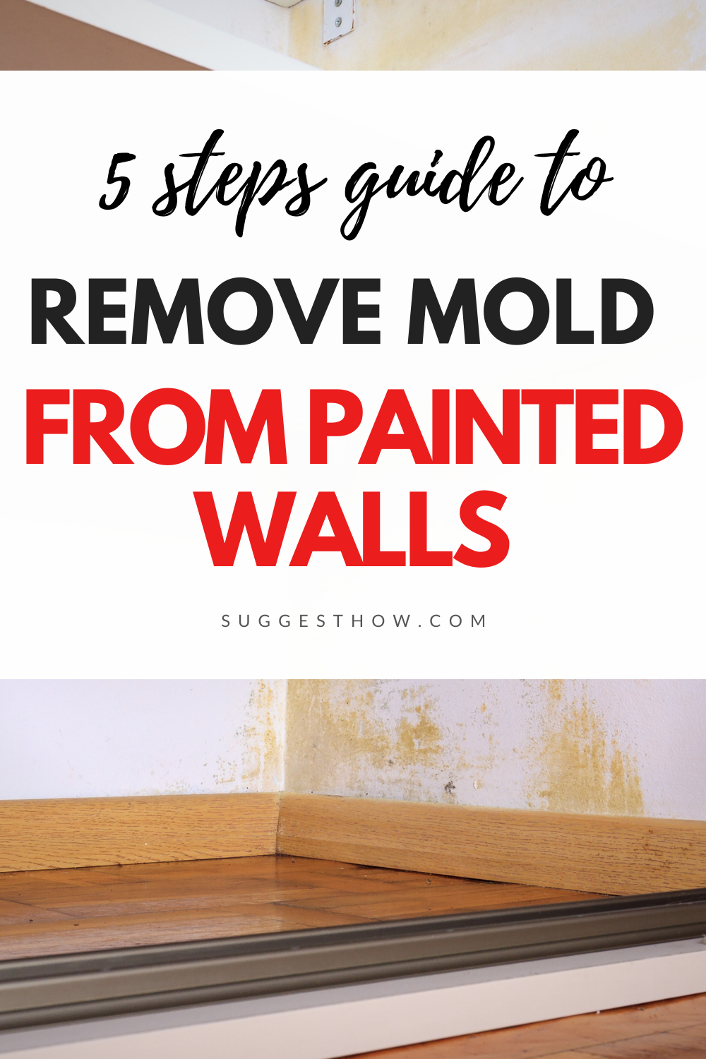 how to remove mould from painted walls
