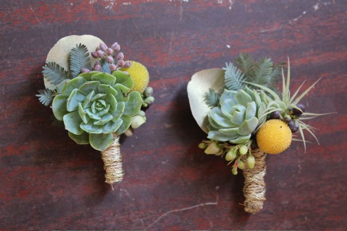 I Fell In Love With These Succulent Boutonnieres As Soon