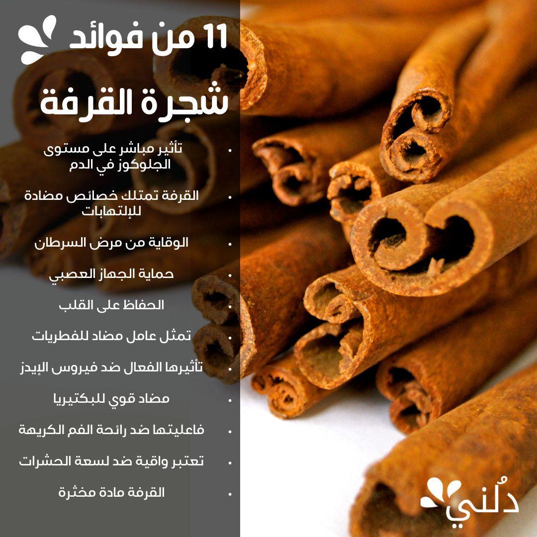 من فوائد شجرة القرفة لم ي سمع بها من قبل Cinnamon Sticks Spices Cinnamon