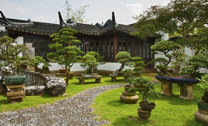 jardin feng shui avec une allée de pierres et des bonzais | Bonsai ...