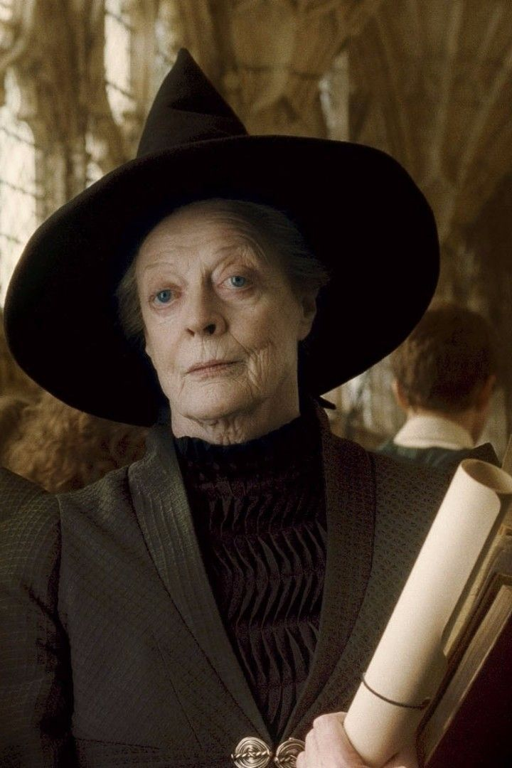 15 Times Professor Mcgonagall Was An Absolute Queen Maggie Smith Harry Potter Characters Harry Potter