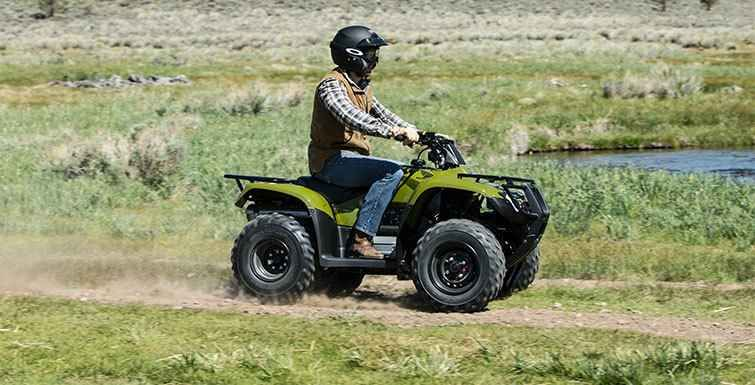 New 2016 Honda FourTrax® Recon® ES ATVs For Sale in Connecticut.