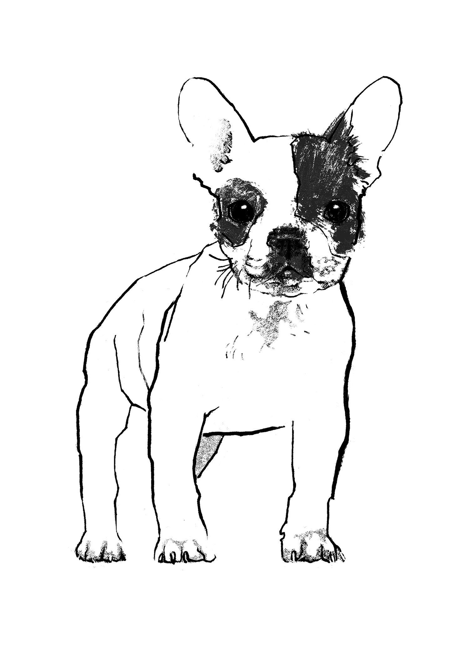French Bulldog Art Dog Art Artist