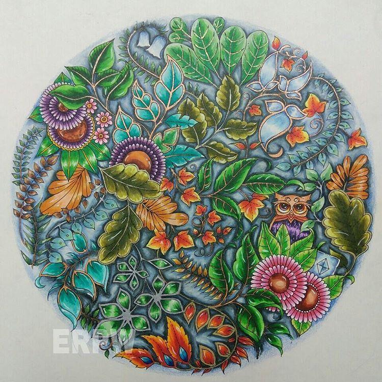 Adult Coloring Books Colouring Mandala Art Color Copic Markers Johanna Basford Secret Garden Prismacolor William Morris