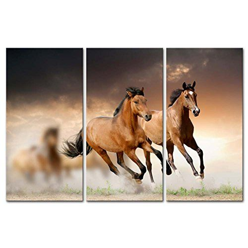 Galloping Wild Horses Framed Artwork Find Wall Art Wall Art To Match Your Decor Horse Wall Art Canvases Horse Wall Art Wall Art Painting