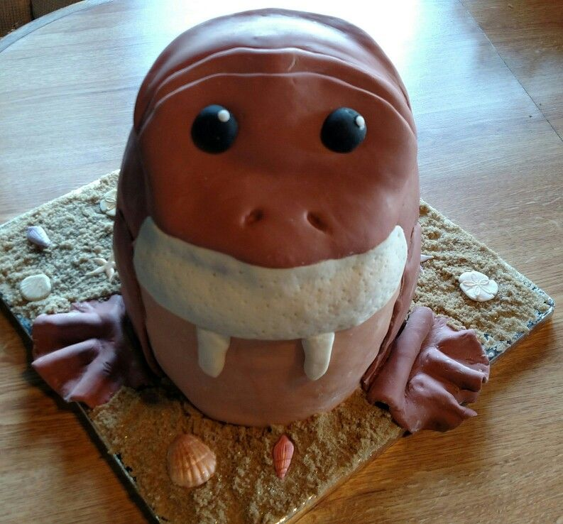 My walrus cake I made. | How to make cake, Cake, Birthday