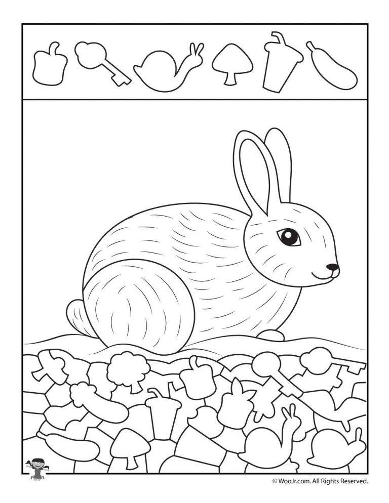 Snow Bunny Hidden Picture Activity Woo Jr Kids Activities Hidden Pictures Hidden Picture Puzzles Spring Kids Activities Rabbit worksheets for kindergarten