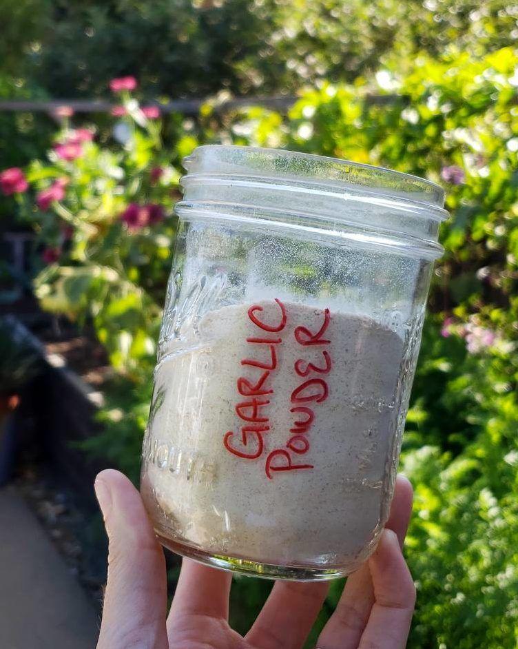 Preserving Garlic How to Make Homemade Garlic Powder