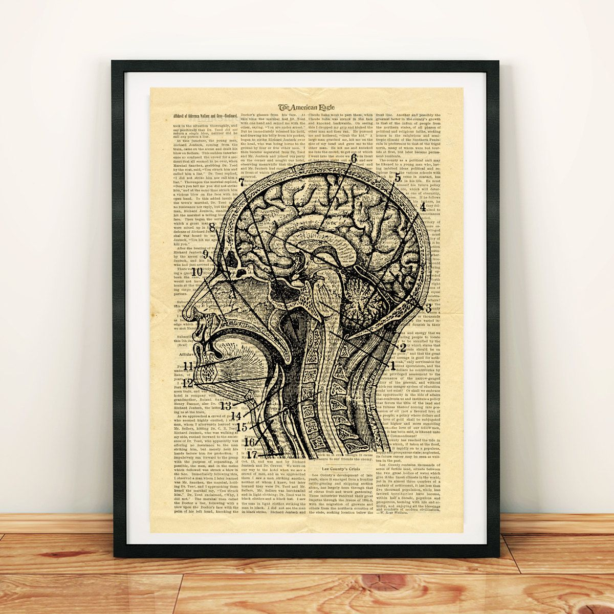 Human Head Brain Anatomy Science Vintage Printable Collage Old ...