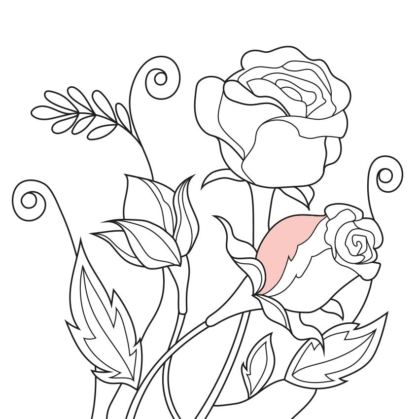 Colorfy Coloring Book For Adults Free On The App Store Colorful Art Coloring Books Colorful Flowers