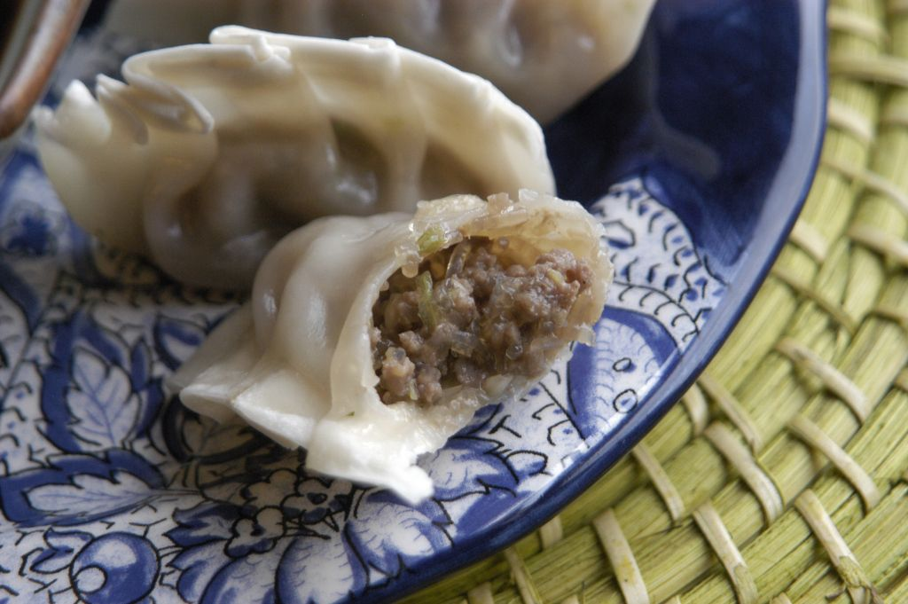 Bulgogi Dumplings | Recipe | Food, Bulgogi, Food processor ...
