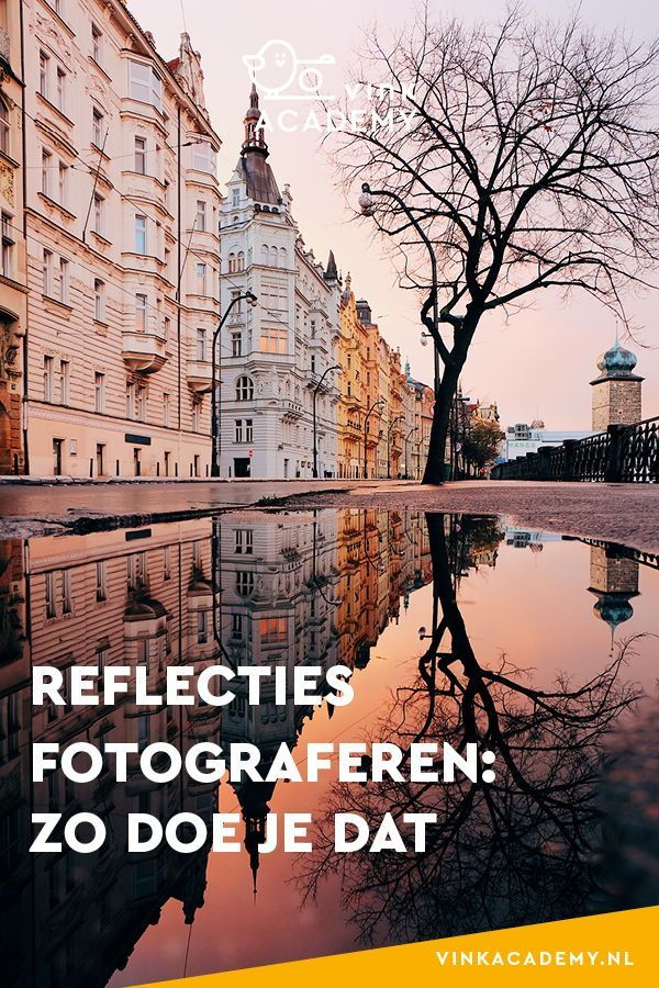 Reflecties fotograferen: tips & tricks • Vink Academy