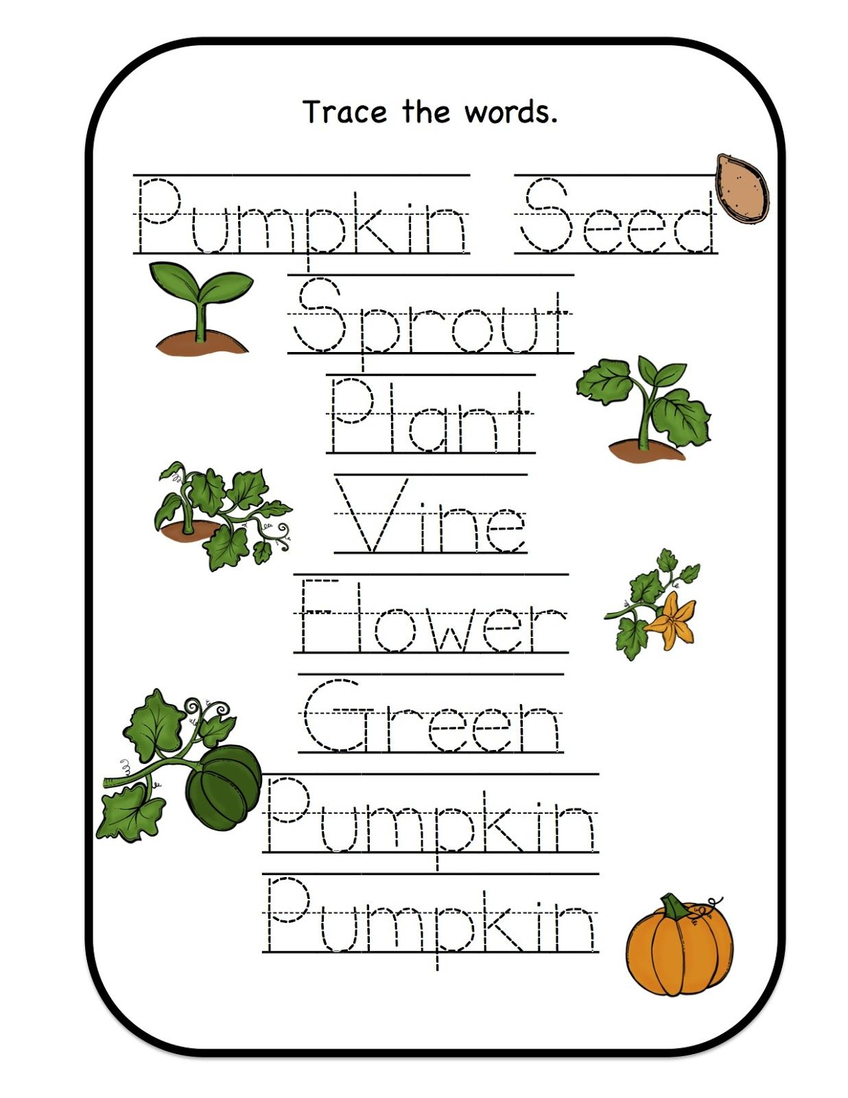 Preschool Printables February 2013 Pumpkin life cycle