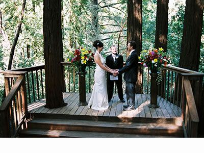 Amphitheatre of Redwoods... Maybe a good spot for a small ceremony ...