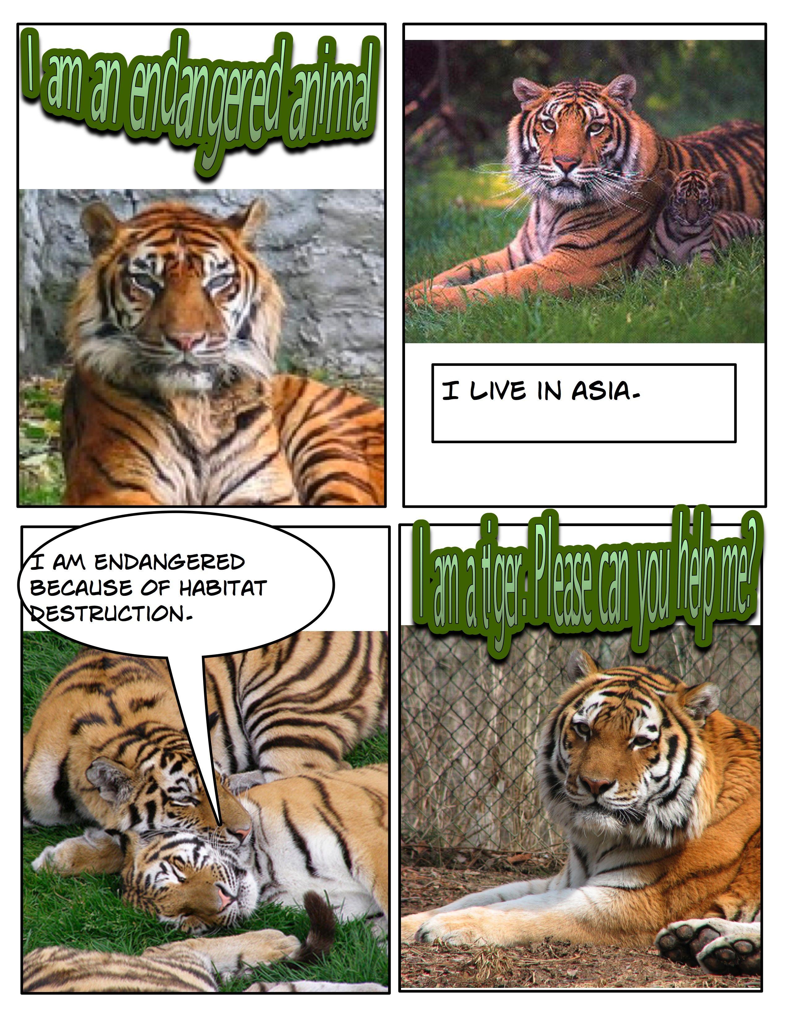 Techexamples Comic Life Examples Animal Reports