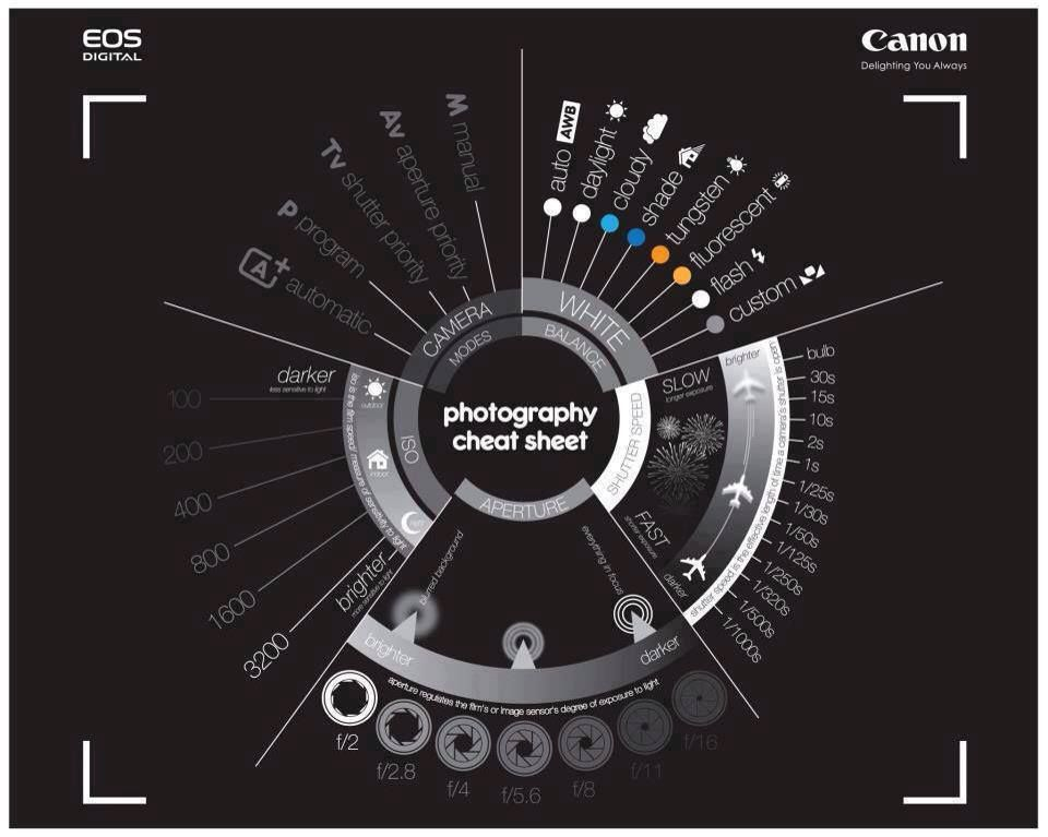Tweet Tweet Many folks have fancy cameras these days but don't even know how to use them. This Canon cheat sheet helps you remember how to use your camera: