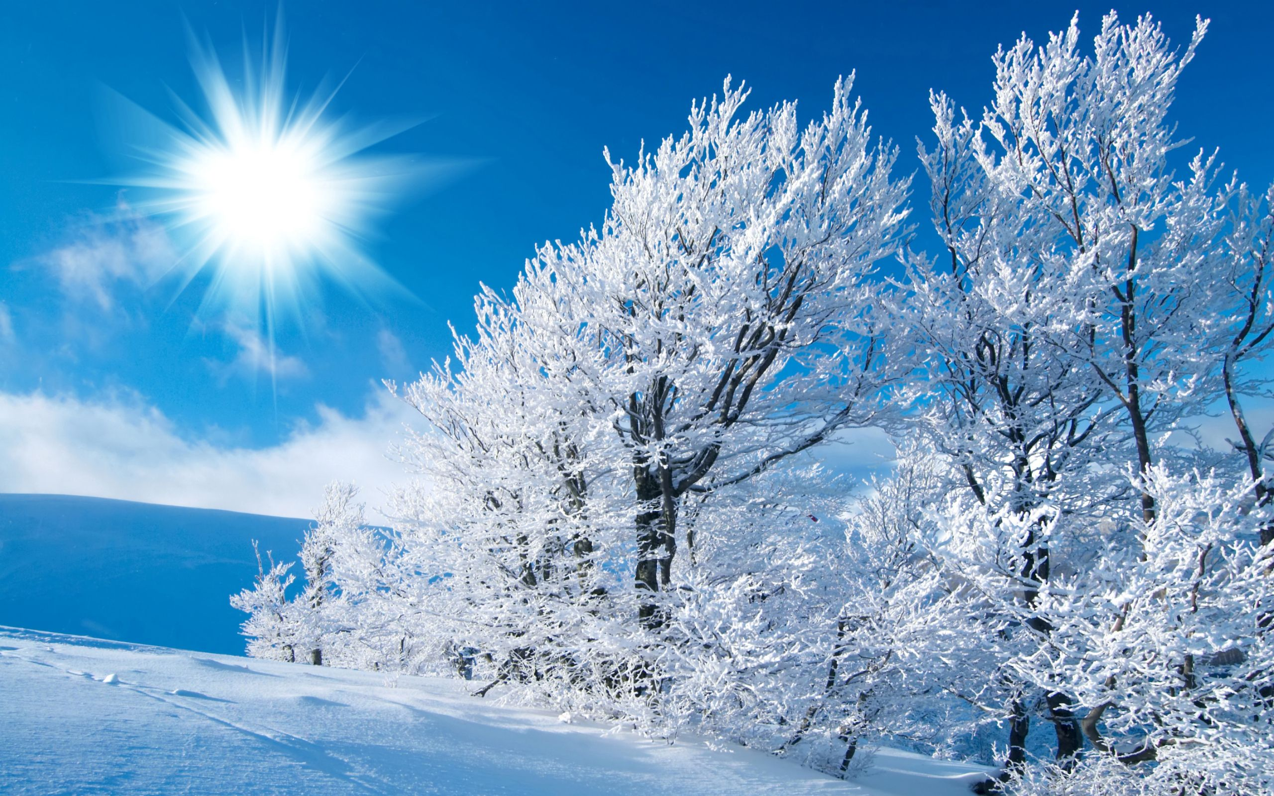 snow scenery full hd - photo #10