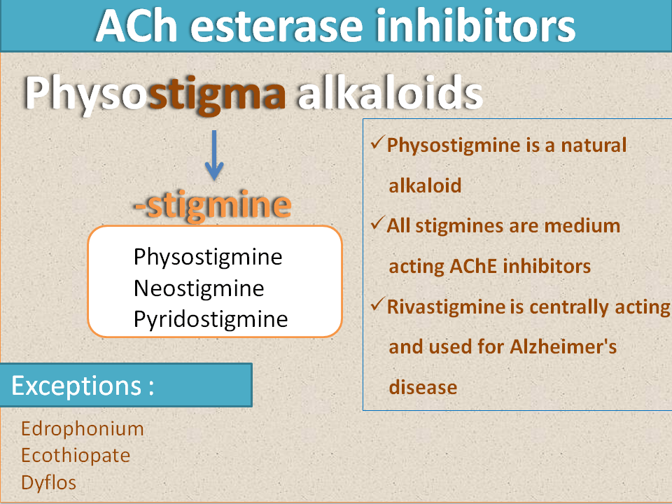 Stigmine Suffix Is Given Based On Natural Alkaloid Medical Facts Suffix Nclex