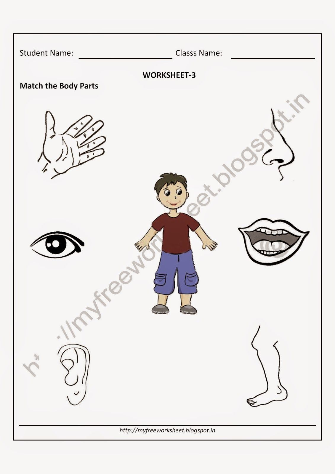 Worksheet for kindergarten evs best images of esl worksheets insect body parts nursery matchthebodypa criabooks also rh pinterest
