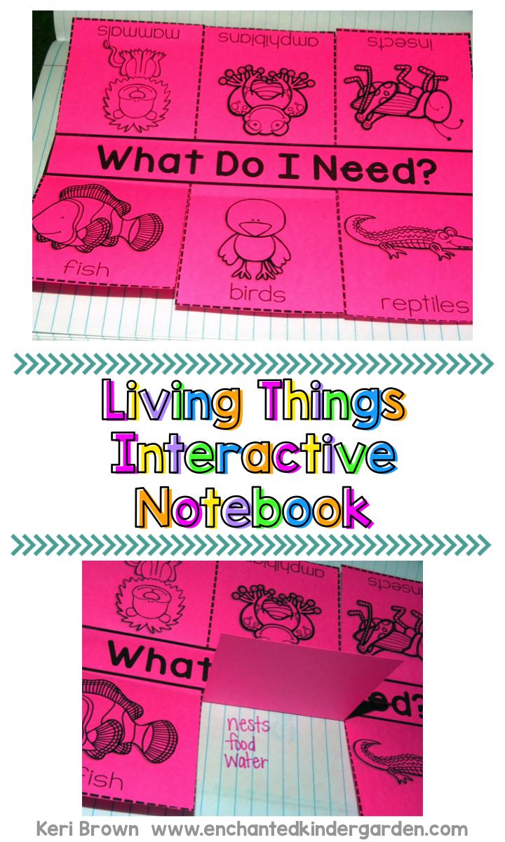 Kindergarten Interactive Science Notebook Theme Living Things Interactive Notebooks Interactive Science Interactive Science Notebook [ 1200 x 720 Pixel ]