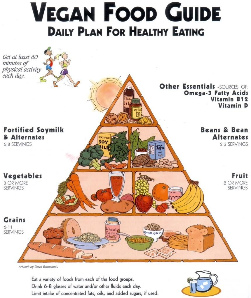 plant based diet college