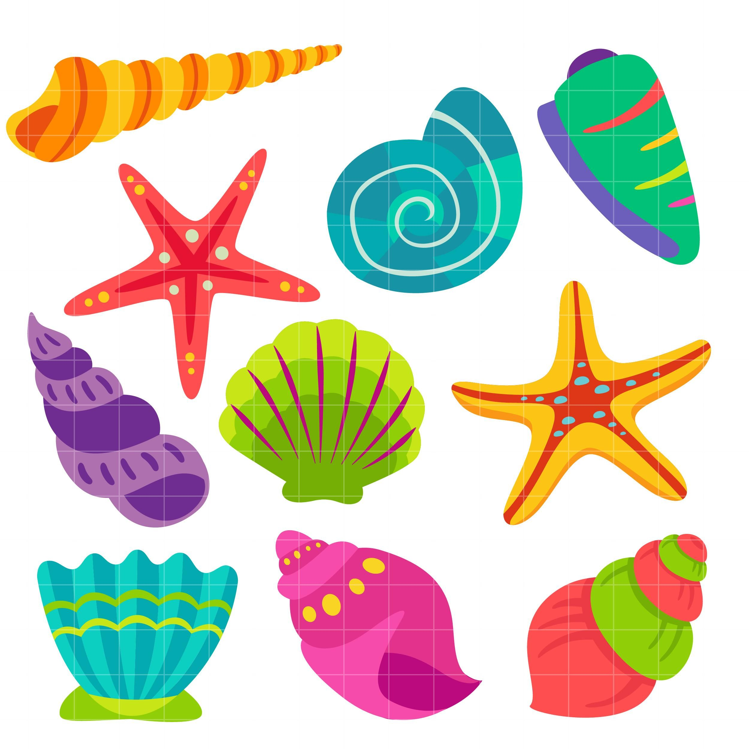 Seashell Clipart (With images) | Seashell clipart