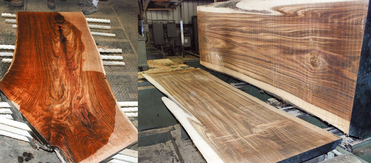 Largest Hardwood Producer In Us To Close Two Sawmills As Trade War Impacts Industry Timber Industry News