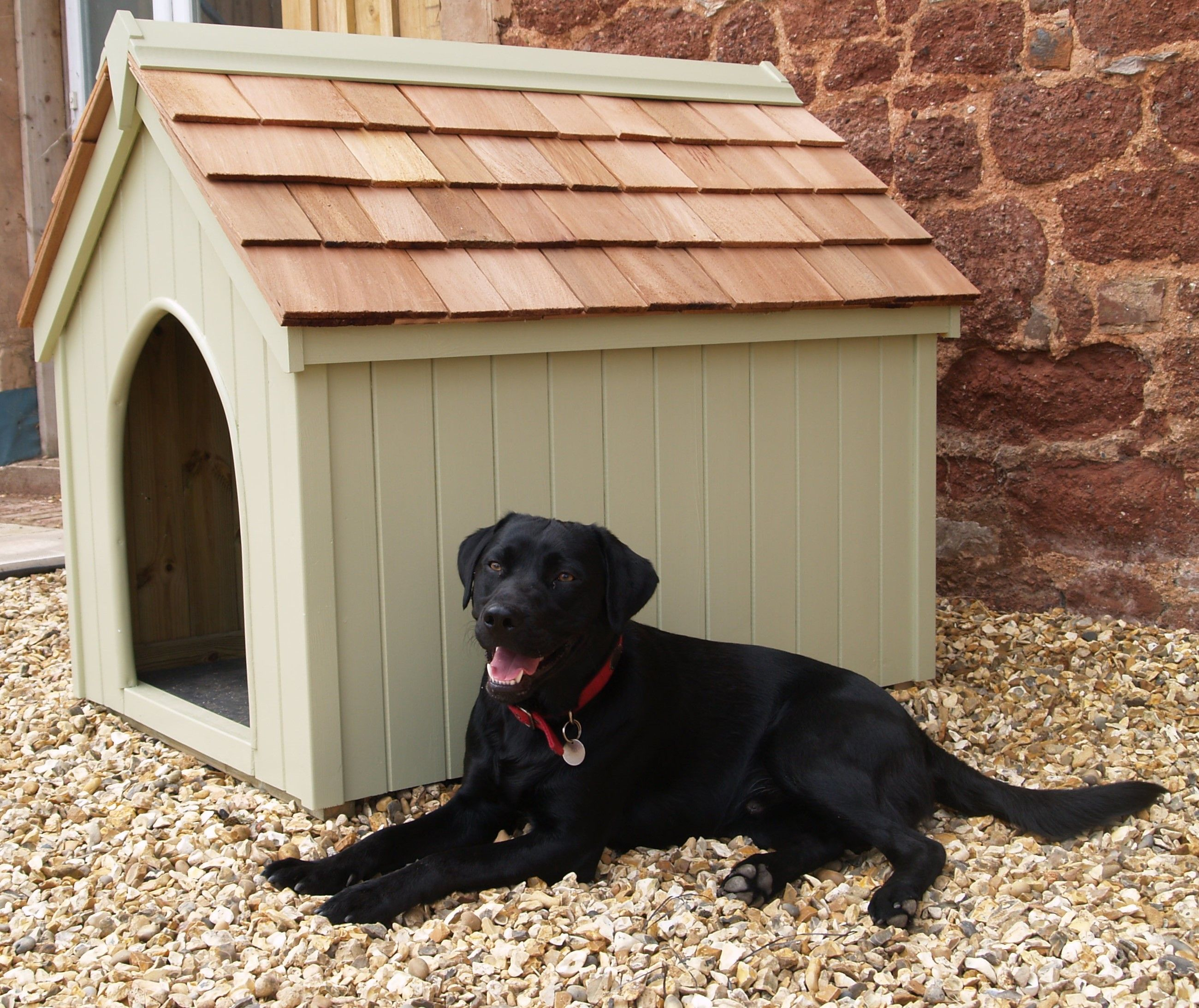 Labrador Puppies For Sale Exeter