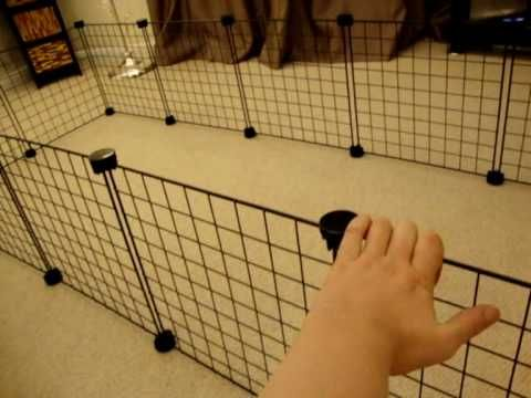 The new B&Q C&C Cage - in stock in UK! - YouTube