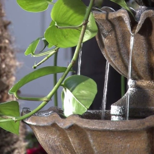 A close up of our Bernini 3.0 Series Fountain. The Self-Watering Garden Planter attachment allows you to customize your fountain with your favorite plant. We love the water trickling down the lush greenery!   #Bernini #fountains #BerniniFountains #fountain #home #garden #homeandgarden #relax #serene #water #lawn #patio #sandiego #california #photoshoot #videoshoot #behindthescenes #bts #QVC #QVCgarden #outdoor #outdoors #green #water #sunny #sunshine #backyard #gardenfountain