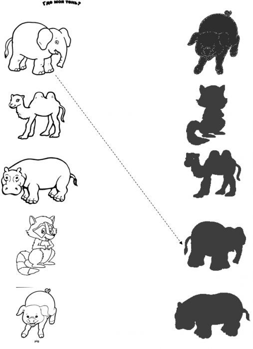 Anasinifi Hayvanlarla Ilgili Golge Eslestirme Calismalari 7