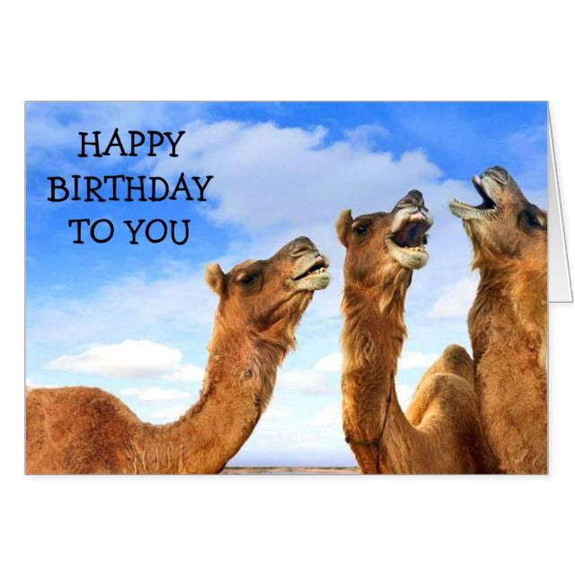 For the child these camel sing happy birthday greeting cards for the child these camel sing bookmarktalkfo Images