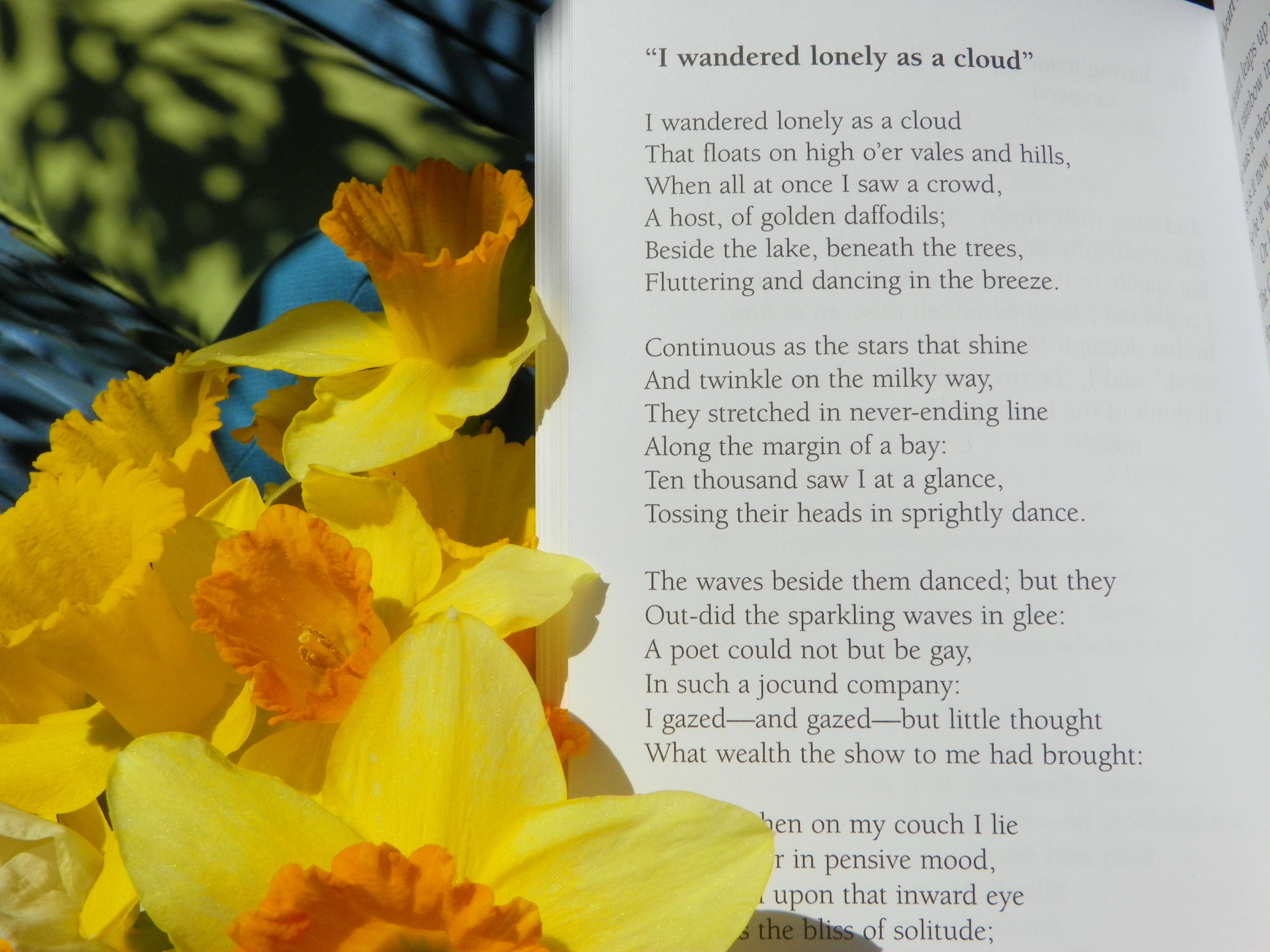 Daffodil I Wandered Lonely A Cloud Veggie Garden Clouds Symbol