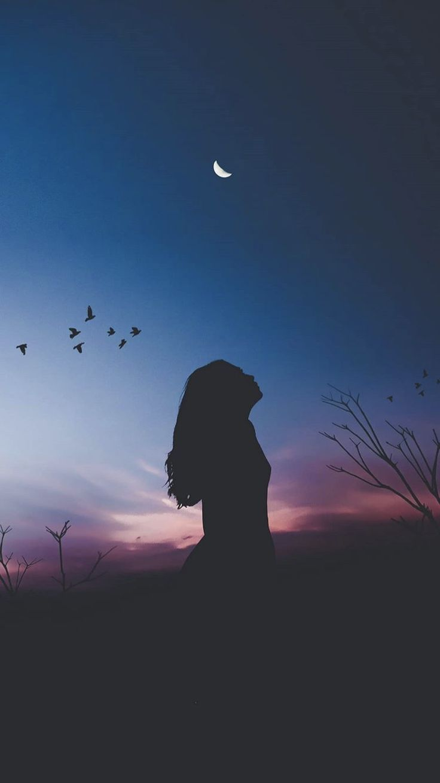 Night silhouette