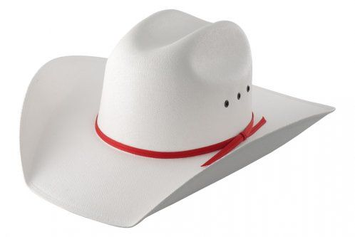 885bbbbf4 Calgary Stampede Centennial Canvas | Products I Love | Cowboy hats ...