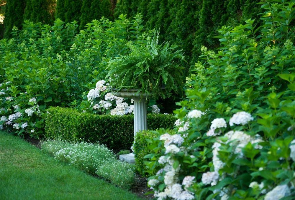 J. Brandon Jones, Glen Gate Company Project Title : Darien Pool Garden Project Location : Darien, CT  APLD | Landscape Designer | Association of Professional Landscape Designers | Garden, Design, Landscaping, Architect