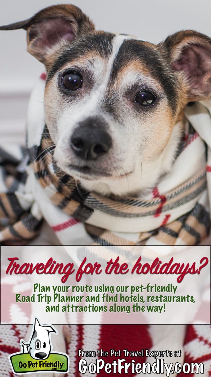 taking your pet with you for the holidays? we can help you find pet