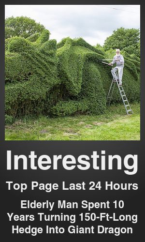 Top Interesting link on telezkope.com. With a score of 13902. --- Elderly Man Spent 10 Years Turning 150-Ft-Long Hedge Into Giant Dragon. --- #topinterestinglinks --- Brought to you by telezkope.com - socially ranked goodness