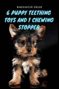 Awesome Puppy Teethers Puppy Teething Puppies Puppy Toys Teething