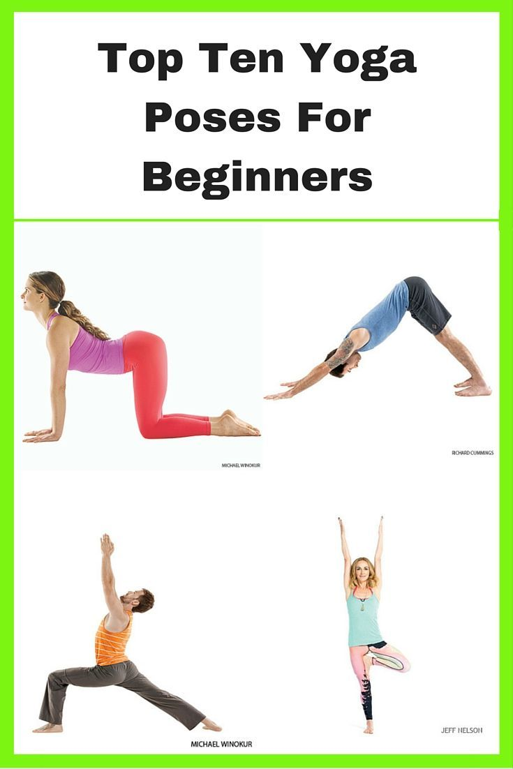 Top Ten Yoga Poses For Beginners  Yoga poses for beginners, Basic