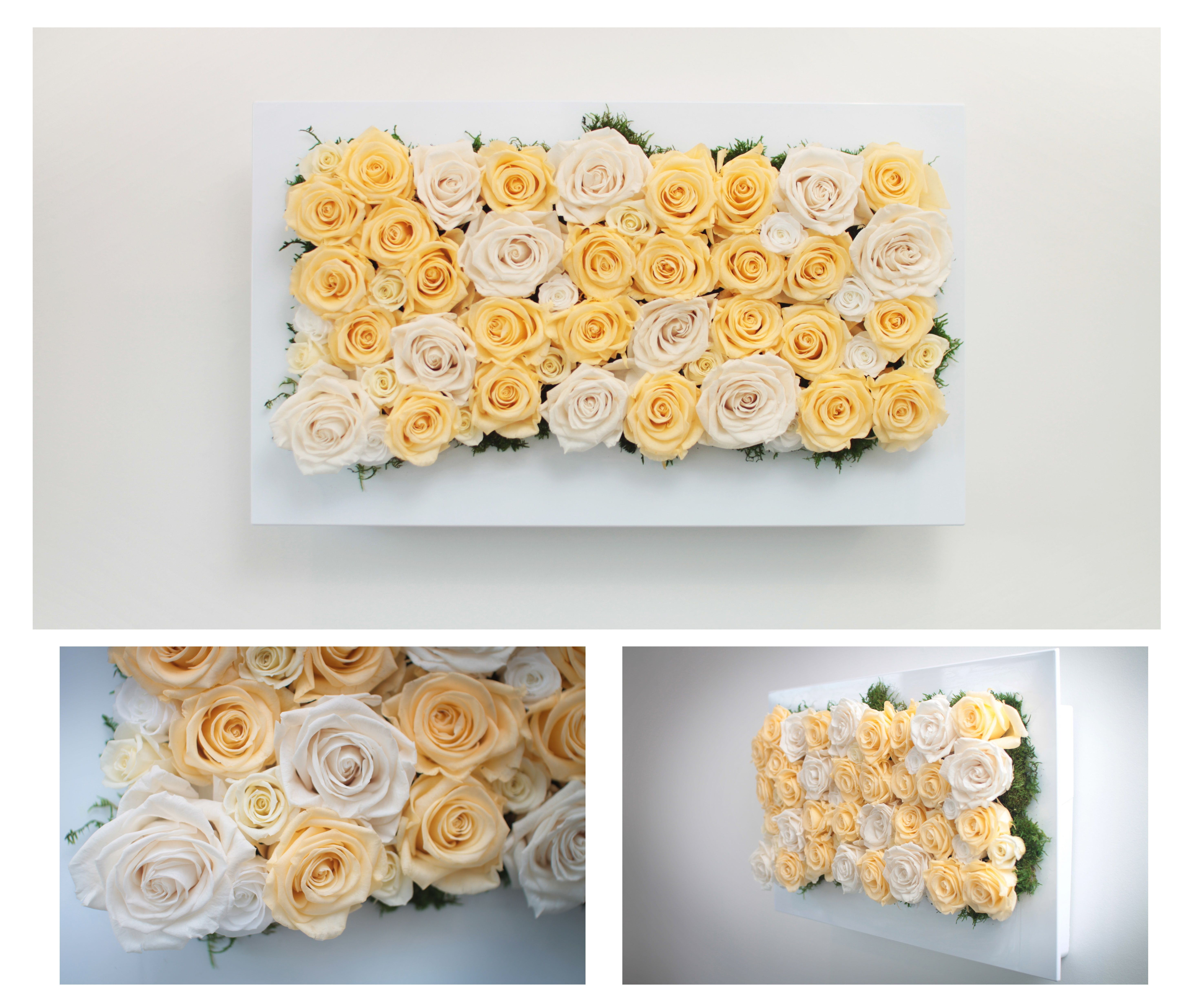 Flower wall using preserved roses - lasts forever! Make your own ...